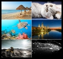 The Best Mixed Wallpapers Pack 95 *2010* [1600x1200 - 2560x1600][JPG][TC][Kotlet13City]