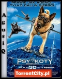 Psy i Koty: Odwet Kitty - Cats and Dogs The Revenge of Kitty Galore *2010* [DVDRip.XviD-ARROW][ENG][TC][AgusiQ] ♥