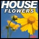 VA - House Flowers [2010][mp3@320kbps][irup]