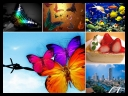 Amazing Colourful Wallpapers - Set 1 [Mix Res][.jpg]