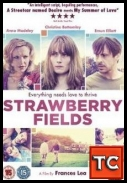 Strawberry Fields *2012* [DVDRiP]  [XViD-TASTE] [ENG] [jans12]