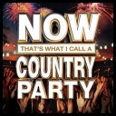 VA - Now Thats What I Call A Country Party (2013) [mp3@320]