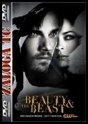 Piękna i bestia - Beauty and the Beast S02E08 [HDTV] [XviD-AFG] [ENG]