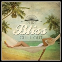 VA - Pure Bliss Chill Out  (2014) [mp3@320kbps]