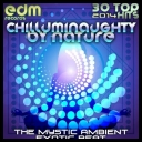 VA - ChillumiNaughty By Nature: The Mystic Ambient Exotic Beat  (2014) [mp3@320kbps]