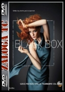Black Box [S01E05] [HDTV] [XviD-FUM] [ENG] [jans12]