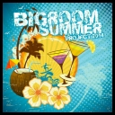 VA - Bigroom Summer Project 2014 (2014) [mp3@320kbps]