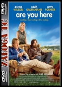 Are You Here *2013* [HDRIP] [AC3] [XVID-ACAB] [ENG] [jans12]
