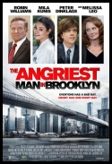 Choleryk z Brooklynu - The Angriest Man in Brooklyn *2014* [WEBRip] [XviD-KiT] [Lektor PL]