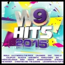 VA - W9 Hits 2015 *2014* [mp3@320kbps]