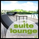 VA - Suite Lounge 12 - A Collection of Relaxing Lounge Tunes (2014) [mp3@320kbps]