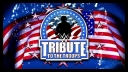 WWE Tribute to the Troops 2015 (23.12,2015) [HDTV] [x264 DX-TV] [ENG] [mp4]
