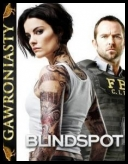 Blindspot: Mapa zbrodni - Blindspot [S02E10] [HDTV.XviD] [Napisy PL] torrent