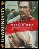 Morze Drzew - The Sea of Trees *2015* [480p.BDRip.XviD.AC3-KRT] [Napisy PL] torrent