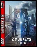 12 Małp - 12 Monkeys [S02E13] [FINAŁ] [480p] [BRRip] [AC3] [XviD-Ralf] [Lektor PL]