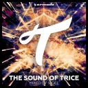VA - The Sound Of Trice (Mixed By Vigel) (2016) [mp3@320kbps]