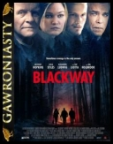 Blackway *2015* [BRRip.XviD-KRT] [Lektor PL]