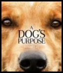 Był sobie pies A Dogs Purpose *2017* {720p WEB DL H264 AC3 EVO} {ENG}