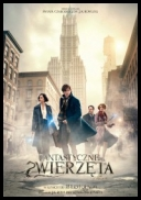 Fantastyczne zwierzęta i jak je znaleźć - Fantastic Beasts and Where to Find Them *2016* [BDRip] [XviD-KiT] [Dubbing PL
