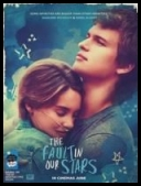 The Fault in Our Stars - Colpa Delle Stelle (2014) [DVD9 - MultiLang 5.1- Multisubs] torrent