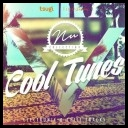 VA   Nu Collection: Cool Tunes  Electronic and Chill Tracks (2016) MP3 [320 kbps]
