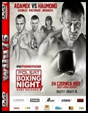 Polsat Boxing Night 7 - Cała gala *24.06.2017* [HDTV] [XviD-janpawel] [PL] torrent