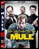 Kurier - The Mule (2014) [480p] [BRRip] [XviD] [AC-3] [Lektor PL] [H1] torrent