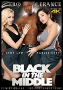 Black In The Middle (2017)[DVDRIP][.MP4]