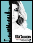 Chirurdzy - Greys Anatomy [S13E15] [720p] [HDTV] [x264-DIMENSION] [ENG]