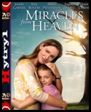 Cuda z nieba - Miracles from Heaven (2016) [480p] [BDRip] [XviD] [XviD] [AC3-H1] [Lektor PL] torrent