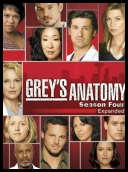 Chirurdzy - Grey's Anatomy (2008) [ENG] [S05E10] [HDTV.XviD-NoTV] torrent