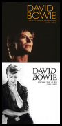 David Bowie - BoxSet Collections. 1977-1988 [25 CD] (2017-2018) [FLAC]