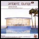 VA - Ambient Lounge 8 (2005) [2CD] [mp3@320]