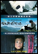 Touch of the Panda *2009* [CN.DVDRip.XviD-PMCG][Chinese][NAPISY ENG]