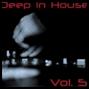 VA - Deep In House Volume 5 [2010][mp3@320 Kbps]