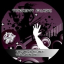 VA - Trident Music Volume 15 [2010][mp3@320 Kbps]